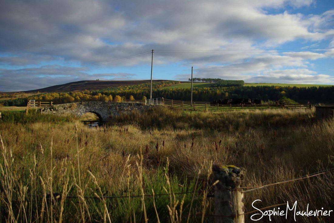 Paysage des Highlands en Ecosse