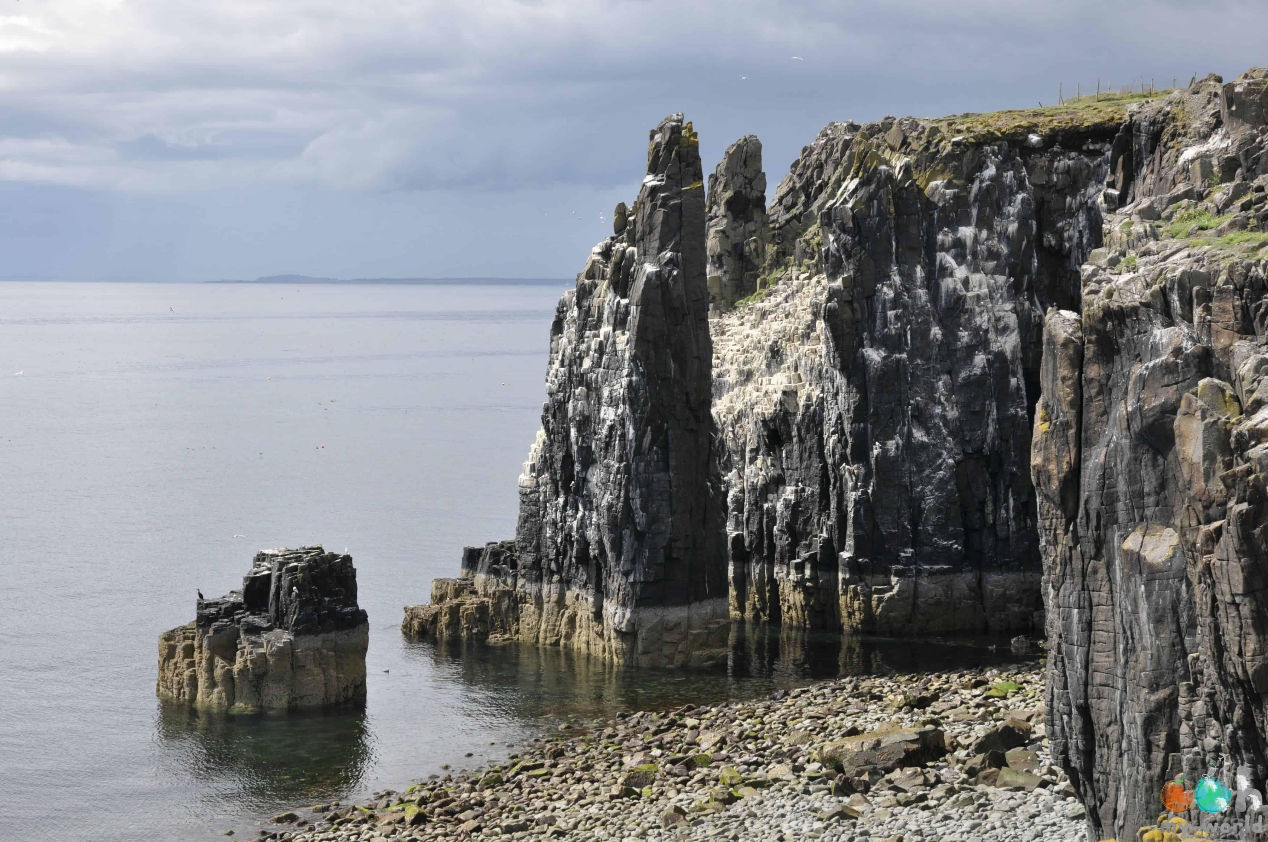 Les falaises de l'île de May en Ecosse