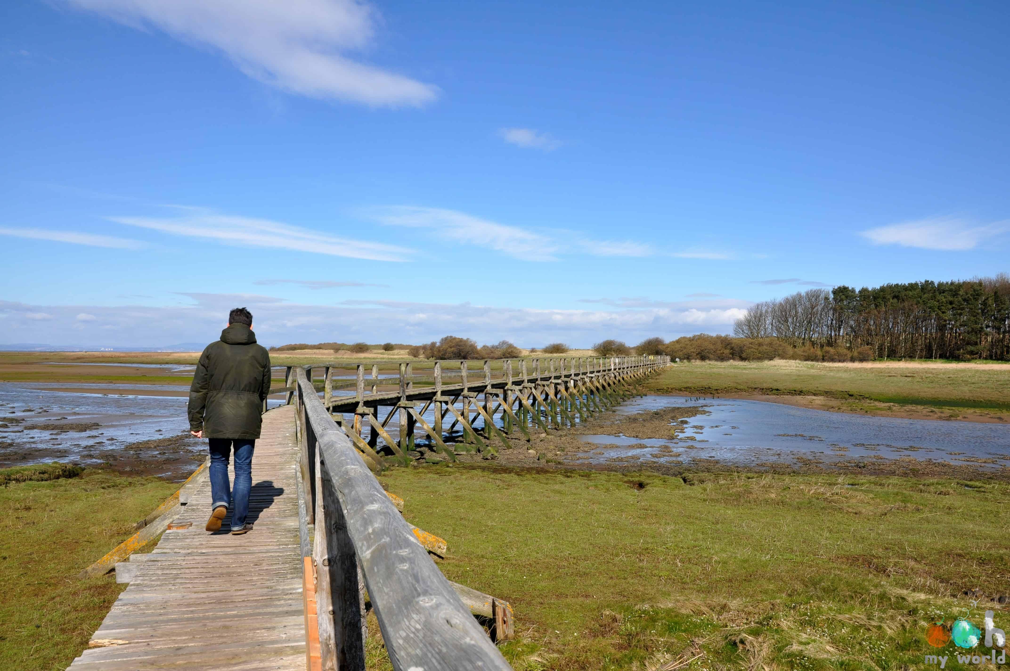 Pont_pour_accéder_a_la_réserve_de_Aberlady