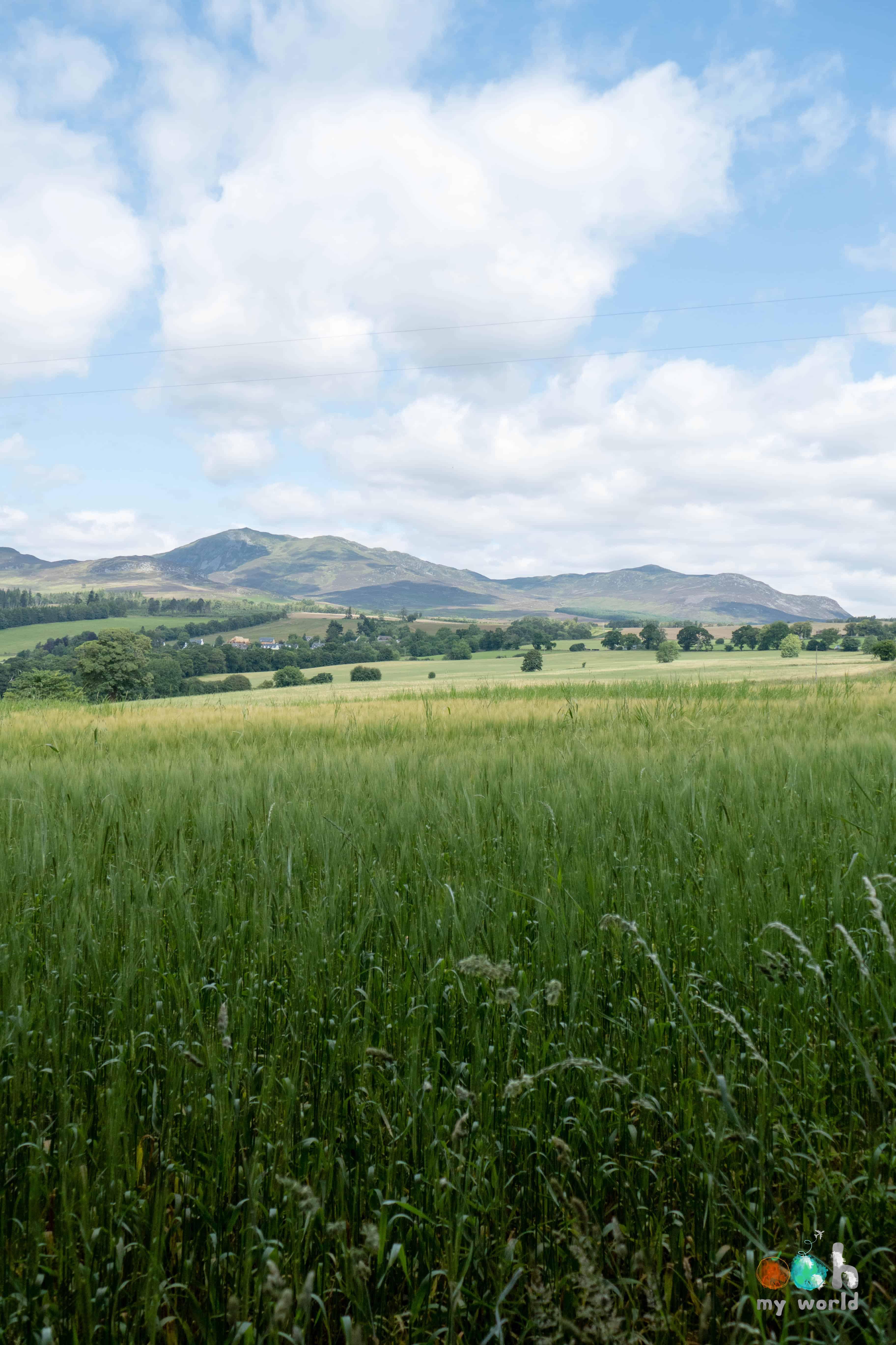 Les champs d'orges de Pitlochry