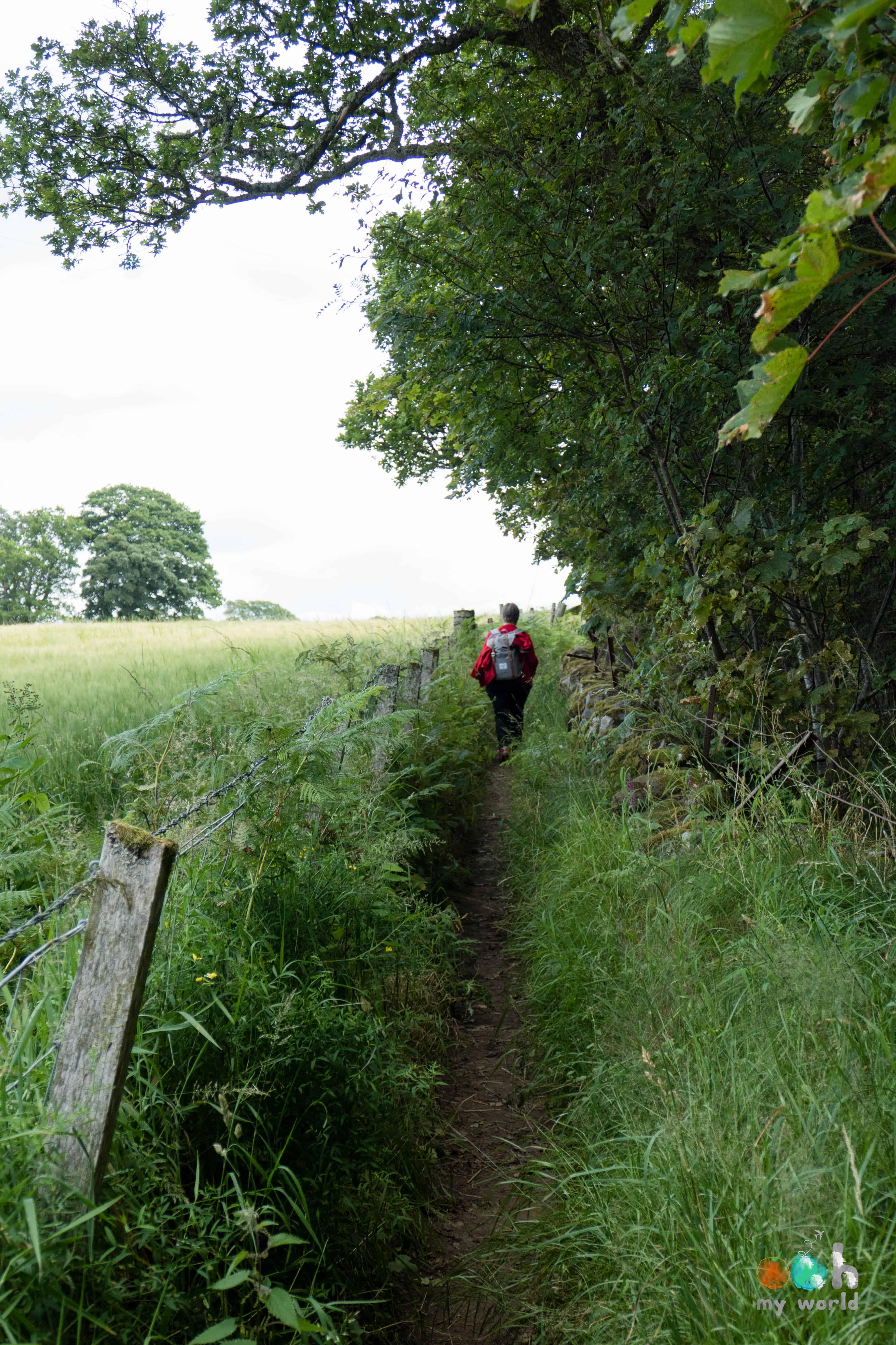 Sur les chemins de rando de Pitlochry