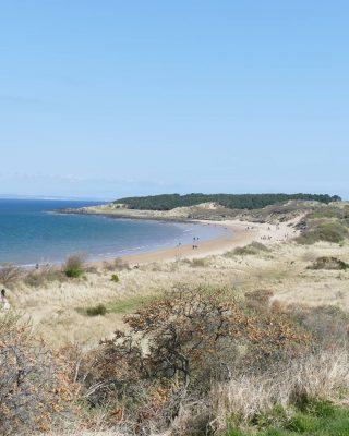 C'est l'heure de la plage ⛱️  Une belle plage en Écosse ça ressemble à ça ! La plage de Gullane est à 30 mins d'Édimbourg et une super escapade pour la journée.  Ne vous étonnez pas si vous voyez des gens se baigner ! 😆 C'est normal... (Enfin moi je n'y mets même pas un doigt de pied)  #plagesauvage #jaimelecosse #écosse #voyageenecosse #eastlothian #scottishbeaches #springinscotland #scotlandisnow #scottishlandscape